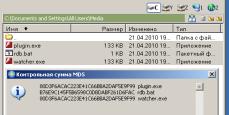 20100421_001_Codec4