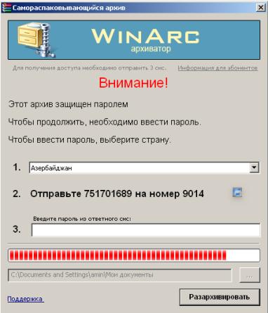 20100428_003_16Mb_virus_installer2