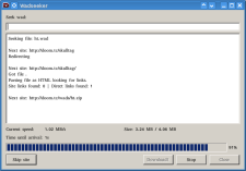 D2_02_wad_downloader